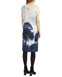 Phase Eight - Blue Carlotta Tree Print - Lyst
