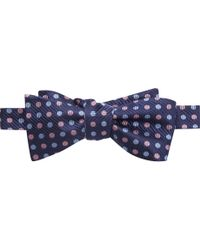 Jos. A. Bank - Blue Executive Collection Dot Bow Tie for Men - Lyst