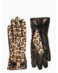 Kate Spade - Multicolor Cheetah Leather Gloves - Lyst