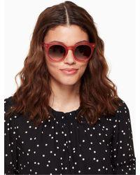 Kate Spade - Multicolor Alexus Sunglasses - Lyst