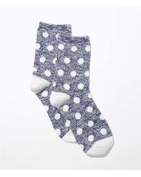 LOFT - Blue Marled Polka Dot Crew Socks - Lyst