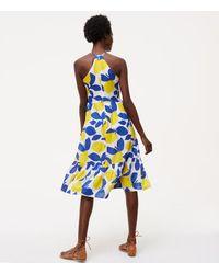 LOFT - White Petite Lemonade Halter Dress - Lyst