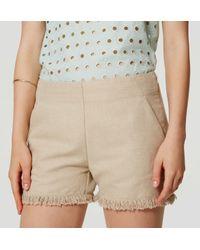 LOFT - Multicolor Fringe Shorts - Lyst