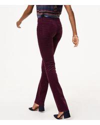 LOFT - Purple Petite Modern Straight Leg Corduroy Pants - Lyst