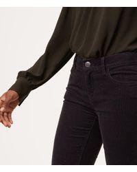LOFT - Multicolor Petite Modern Straight Leg Corduroy Pants - Lyst
