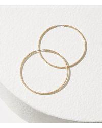 LOFT   Metallic Twist Hoop Earrings   Lyst