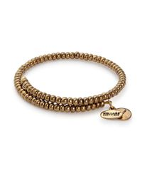 ALEX AND ANI | Metallic Woodland Primal Spirit Wrap Bracelet | Lyst