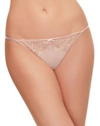B.tempt'd - Multicolor Sultry Chantilly Lace And Mesh Thong - Lyst