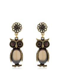 Alcozer & J - Metallic Kira & Melita Owl Pendant Earrings - Lyst