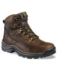 Timberland   Brown Men's Waterproof Chocorua Trail Gore-tex Hiker Boots for Men   Lyst