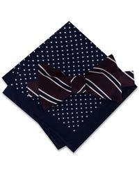 Tommy Hilfiger - Blue Stripe To-tie Bow Tie & Dot Pocket Square Set for Men - Lyst