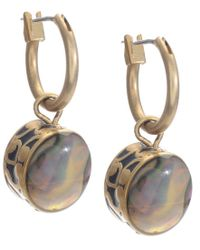 Kenneth Cole | Multicolor Earrings, Gold-tone Abalone Drop | Lyst