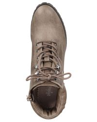 Style & Co. - Brown Style&co. Caitlin Lace-up Booties - Lyst