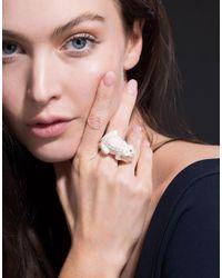 Bibi Van Der Velden - White Toad On A Pearl Ivory Ring - Lyst