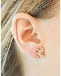 Dana Rebecca - Multicolor Lori Paige Stud Earrings - Lyst