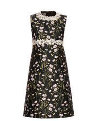 Giambattista Valli   Black Daisies-embroidered Sleeveless Twill Dress   Lyst