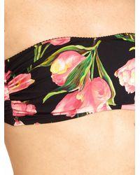 Dolce & Gabbana - Multicolor Tulip-print Bandeau Bikini Top - Lyst