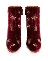 Aquazzura - Red Fauna Insect-embellished Velvet Ankle Boots - Lyst