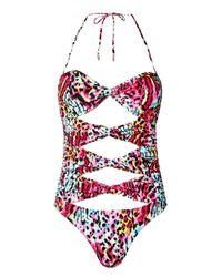 Matthew Williamson | Pink Rainbow Akita Animal Cutout Swimsuit | Lyst