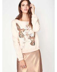 Miss Selfridge - Multicolor Premium Hummingbird Embellished Top - Lyst