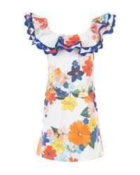 CELIA B Blue Calla Ruffle Mini Dress