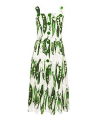 Dolce & Gabbana - Green Snap Pea Midi Dress - Lyst
