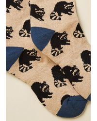 ModCloth - Multicolor Credible Critter Socks In Raccoon - Lyst