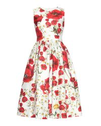 Dolce & Gabbana | Red Printed Cotton And Silk Dress | Lyst