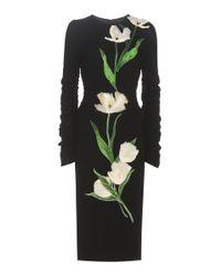 Dolce & Gabbana | Black Furek Wool-blend Dress With Appliqué | Lyst