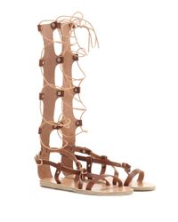 Ancient Greek Sandals - Brown Sofia High Leather Gladiator Sandals - Lyst