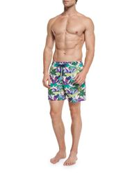 Vilebrequin | Pink Moorea Forest Paradise Printed Swim Trunks for Men | Lyst