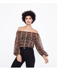 New Look - Brown Leopard Print Chiffon Bardot Bodysuit - Lyst