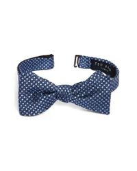 Ted Baker | Blue Tussah Party Dot Silk Bow Tie for Men | Lyst