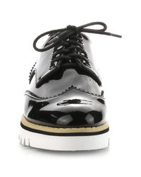 Cape Robbin - Black Wingtip Sneaker for Men - Lyst