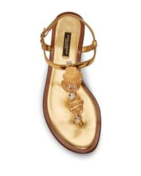 Dolce & Gabbana - Multicolor Crystal & Pearl Embellished Seashell Flat Sandal - Lyst