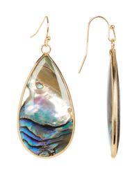 Panacea   Multicolor Large Abalone Teardrop Dangle Earrings   Lyst