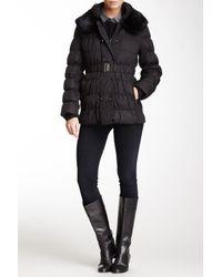 Via Spiga | Black Quilted Genuine Dyed Rabbit Fur Collar Puffer Coat | Lyst