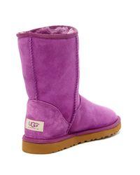 Ugg - Purple Classic Short Genuine Sheepskin Lined Boot - Lyst