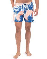 Sol Angeles - Blue Paleta Palm Swim Shorts for Men - Lyst