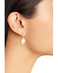 Freida Rothman - Metallic Audrey 14k Yellow Gold Plated Sterling Silver Faceted Cz Teardrop Earrings - Lyst