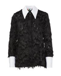 MSGM - Black Shirt - Lyst