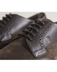 Tod's - Leather & Suede Brogue Cafe Brown for Men - Lyst