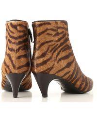 Twin Set - Brown Tiger Print Booties - Lyst