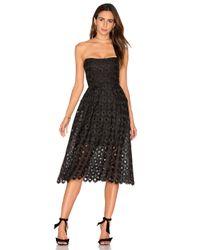 Nicholas | Black Spot Lace Ball Dress | Lyst