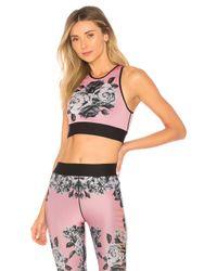 Ultracor - Pink Altitude Sports Bra - Lyst