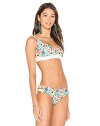 Agua Bendita Multicolor Bendtio Lirio Reversible Bikini Bottom