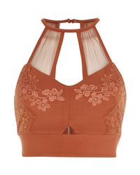 River Island - Rust Orange Lace And Mesh Bralet - Lyst