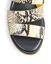Cole Haan - Multicolor Allesa Grand Snake-print Leather Cork Wedge Slides - Lyst