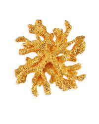 Kenneth Jay Lane - Metallic Satin Goldtone Reef Pin - Lyst