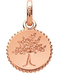 Links of London | Metallic Amulet 18ct Rose Gold Vermeil Tree Of Life Charm | Lyst